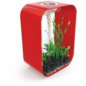 Biorb Life 45 Aquarium Intelligent LED Red