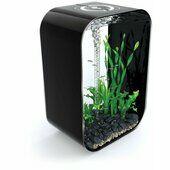 Biorb Life 60 Aquarium Intelligent LED Black