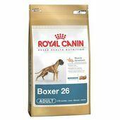 Royal Canin Boxer 26 Adult Dog Food