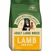 James Wellbeloved Large Breed Lamb & Rice Adult Dry Dog Food