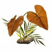 Komodo Rainforest Canopy Plant 38cm