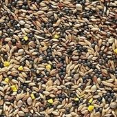 Johnston & Jeff Canary Favourite Mixed Seed 20kg
