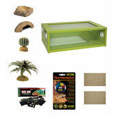 Medium Leopard Gecko Starter Kit - Monkfield Vivarium Green (24 Inch)