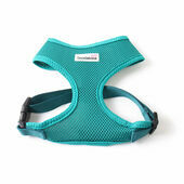 Teal Doodlebone Air Mesh Dog Harness