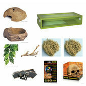 The Pet Express Corn Snake Starter Kit - Extra Large Green Vivarium (36