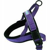 Dog & Co Nylon Norwegian Harness Reflective Padded Purple XX large