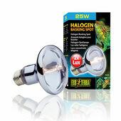 Exo Terra Halogen Basking Bulb