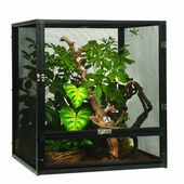 Exo Terra Screen Terrarium Small Tall 45cm x 45cm x 60cm