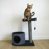 Rosewood Charcoal Felt Cat Scratch House and Perch