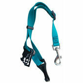 Sotnos Universal Dog Seat Belt Restraint in Teal