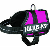 Julius-K9 Powerharness Fuchsia Pink