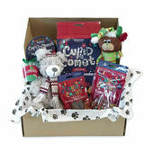 Doggy Deli Christmas Gift Box for Dogs