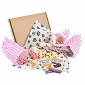Doggy Deli Chocolate Gift Box for Dogs