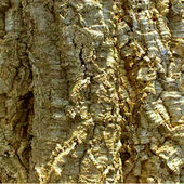 HabiStat Cork Bark