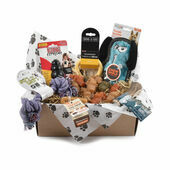 Tough Toy & Treats Subscription Box for Small Dogs