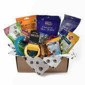 Dental Subscription Box for Small Dogs