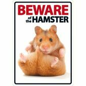 Beware Of The Hamster