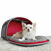 KONG 2-in-1 Pet Carrier & Travel Mat