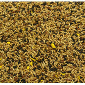 Bartholomews Colonels® Canary No. 2 Bird Seed Mix 20kg