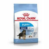 Royal Canin Maxi Puppy Dry Dog