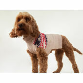 Joules Fairisle Dog Jumper