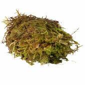 HabiStat Sphagnum Moss