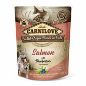 Carnilove Salmon with Blueberries Wet Puppy Food