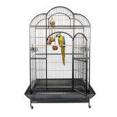 Sky Pet Products Liberta Atlantis Bird Cage