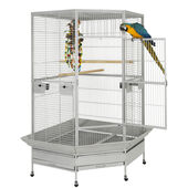 Sky Pet Products Raleigh Stone