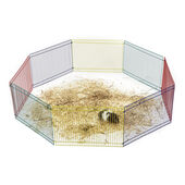 Sky Pet Products Hamster Play Pen