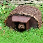 Wildlife World Hedgehog Haus