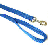 Canac 6ft Nylon Dog Lead Blue