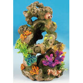 Classic Coral Life Coral On Lava 280mm