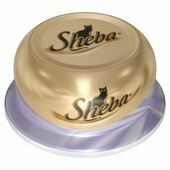 24 x Sheba Dome Jelly Tuna & Prawn 80g