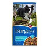 Burgess Active Dog Chicken and Beef 15kg