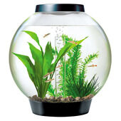 Baby Biorb Aquarium Standard LED Black Ltr 15