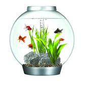 Biorb 60 Classic Aquarium Standard LED Silver
