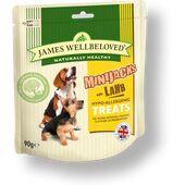 James Wellbeloved Dog Minijacks Treats Lamb 90g