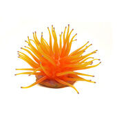 Penn-Plax Ornament Anemone Light Orange Large