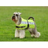 Petlife Flecta Yellow Hi Vis Water-resistant Dog Jacket