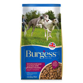 Burgess Greyhound and Lurcher Chicken 12.5kg
