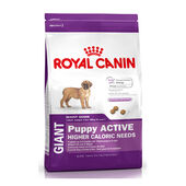 Royal Canin Active Giant Breed Puppy Food - 15kg