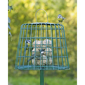 C J Wildlife Guardian Fat Ball & Suet Feeder Green 26x31cm