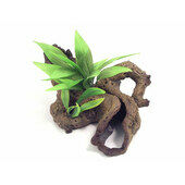 Blue Ribbon Decor Mopani Wood W/plants Large 40 X20 X22cm