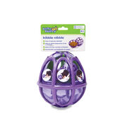 PetSafe Busy Buddy Kibble Nibble Feeder Ball Medium- large