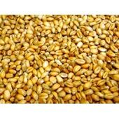 Willsbridge Poultry Wheat 20kg
