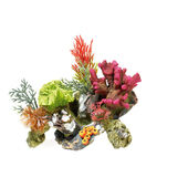 Classic Coral Life Coral On Rocks With Plants 170mm