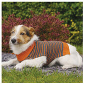 Rosewood Dog Sweater Striped