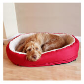 Rosewood 40 Winks Orthopedic Dog Bed - Red