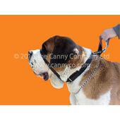 Canny Collar Colossus Dog Training Collar Black